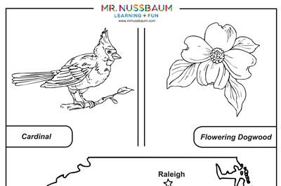Mr. Nussbaum USA United States - State Symbols Activities