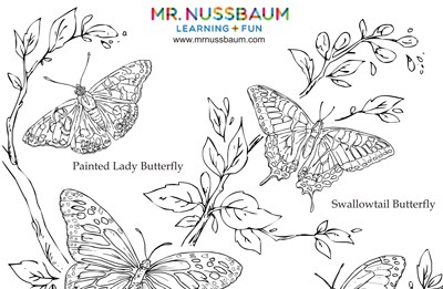 Top 25 Free Printable Butterfly Coloring Pages - YouTube | 261x400