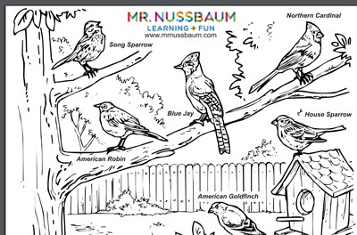 The Pilgrims Coloring pages: Pilgrims lived in simple homes ... | 264x400