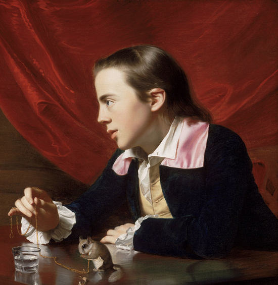 The Boy with the Squirrel (Henry Pelham) (1765)